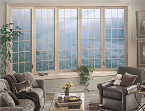 Energy Efficient Windows Nashville TN